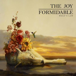 The Joy Formidable - Wolf's Law (Cover)
