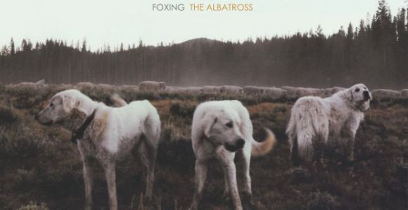 CYLS-068-Foxing-The-Albatross1