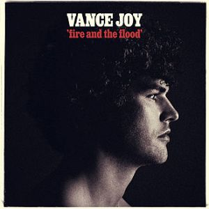 Fire_and_the_Flood_by_Vance_Joy_cover