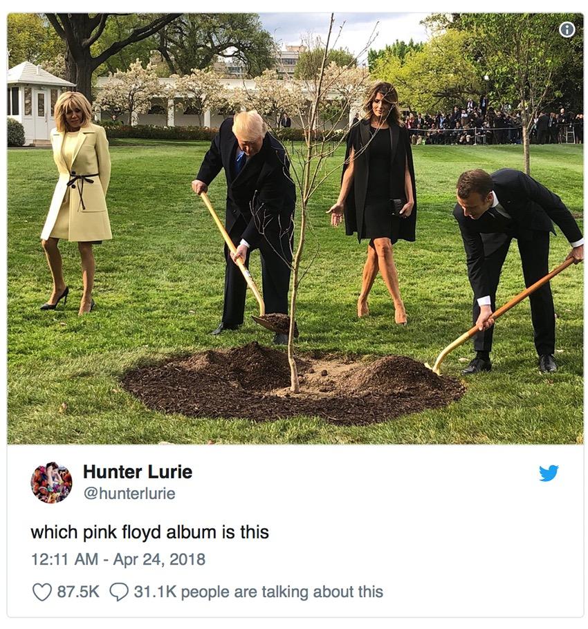 trump macron tree