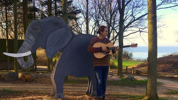 riley elephants