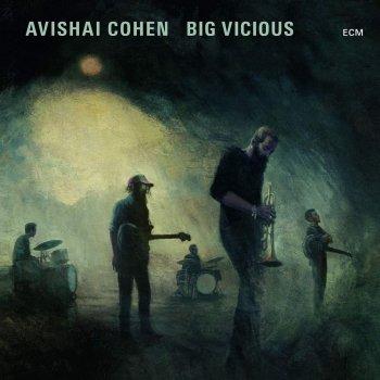 avishai-cohen-big-vicious-208309